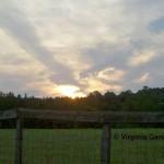 Earlysville Realtor, Virginia Gardner